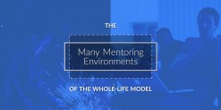 The Many Mentoring Environments of the Whole-Life Model